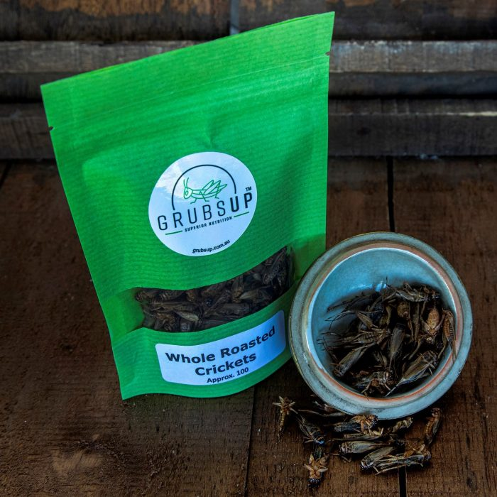 Superior Nutrition Products | Our Products | Grubs Up | Best Selling Roast Cricket Protein | Roasted Crickets Grinder Refill | Roasted Cricket Protein Bar | Best Roasted Crickets |